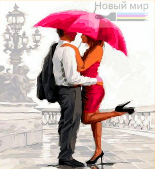 Раскраска-алмазка по номерам Объятия под красным зонтом